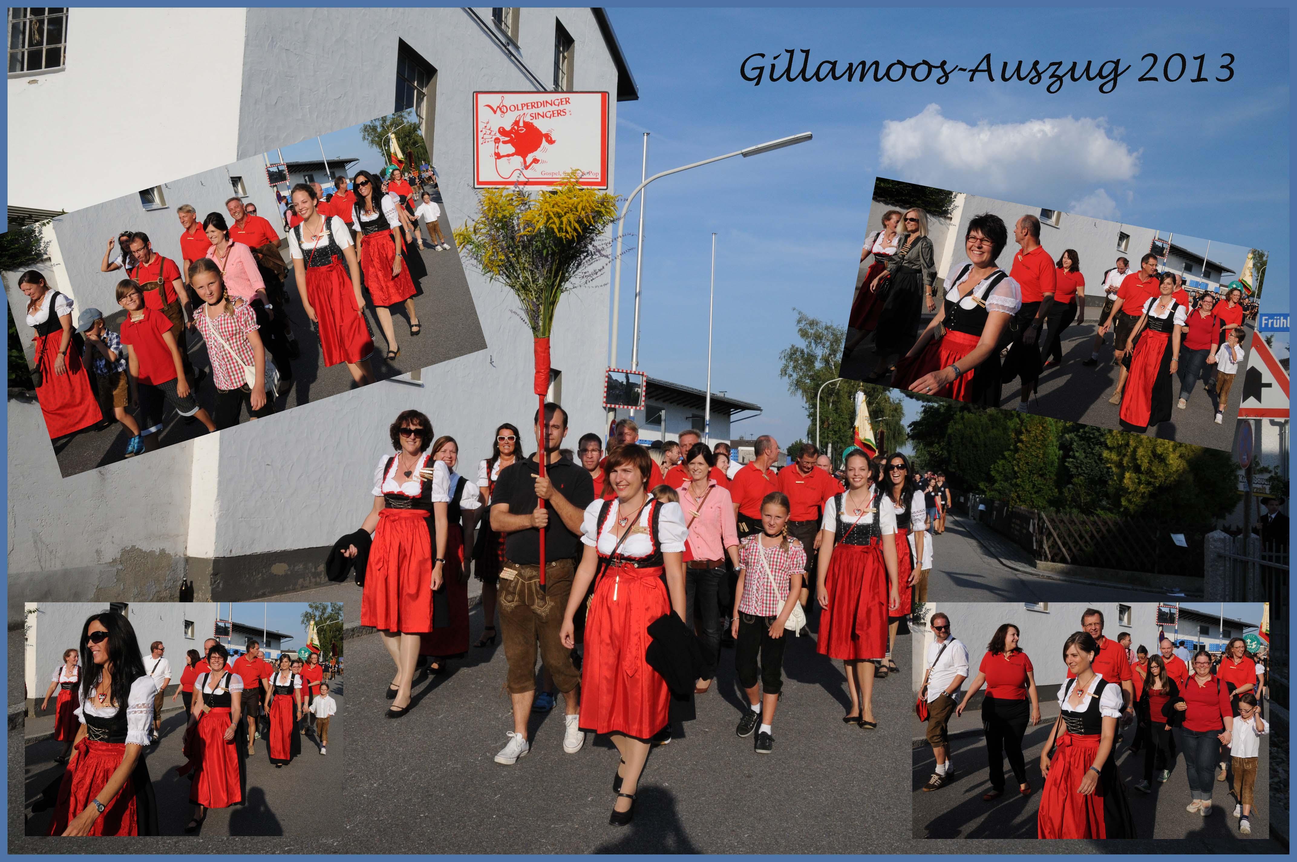Gillamoos 2013